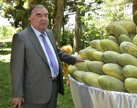 Глава государства Эмомали Рахмон посетил сады и виноградники дехканских хозяйств района Хуросон