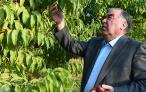 Лидер нации Эмомали Рахмон посетил дехканские хозяйства Дангаринского района